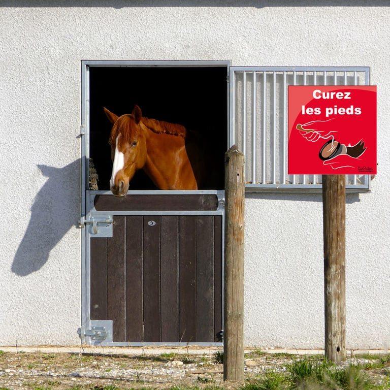 panneau curez les pieds de vos chevaux