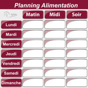 Planning ALIMENTATION 50 x 50 cm-0