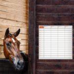 planning effaçable d'alimentation chevaux