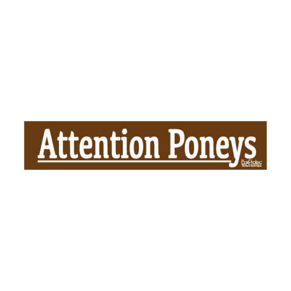 stickers attention poneys marron boxprotec