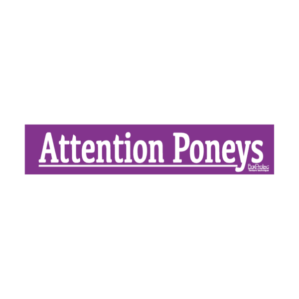autocollant attention poneys violet boxprotec
