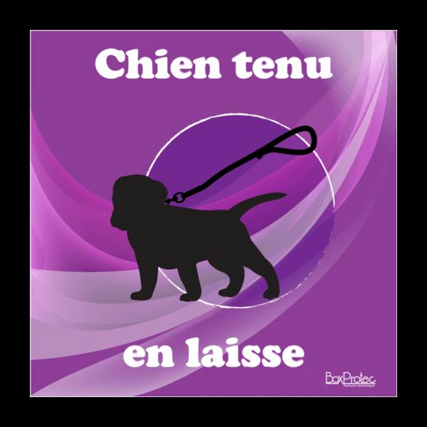 panneau chien tenu en laisse violet