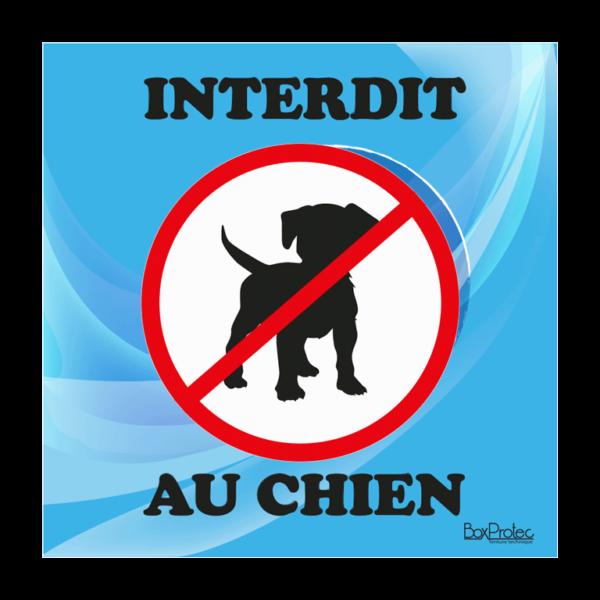 panneau interdiction au chien bleu