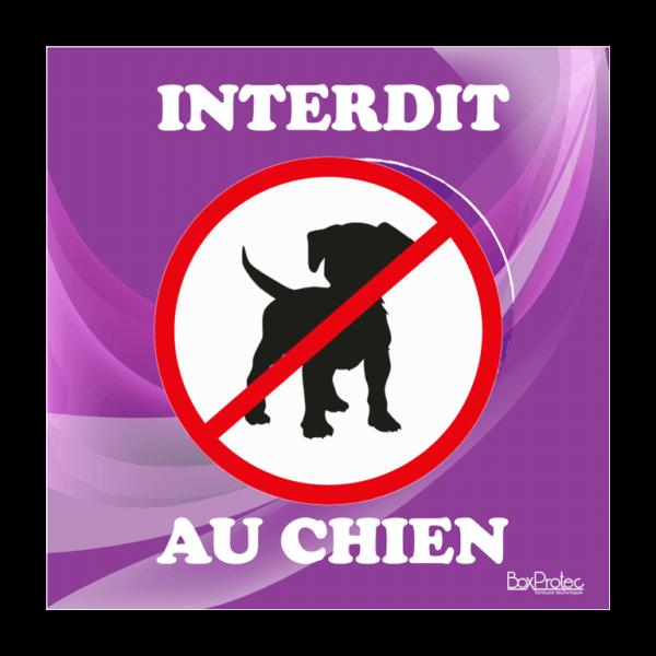 panneau interdit au chien violet