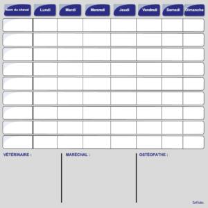 planning journalier chevaux et case divers bleu effaçable boxprotec 80x100 cm