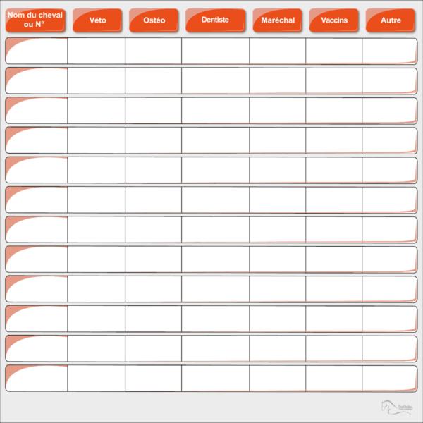 tableau planning de soins chevaux et poney véto, ostéo, dentiste, vaccin orange effaçable boxprotec 100x100 cm