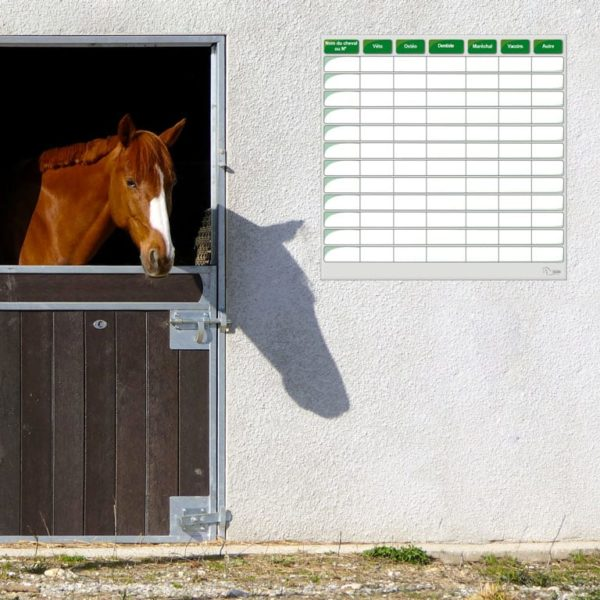 tableau effaçable de soins pour chevaux