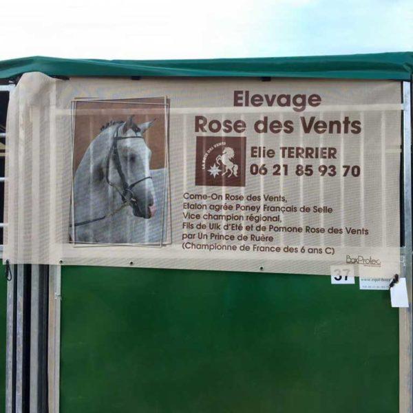 tenture de box personnalisée élevage rose des vents élie Terrier