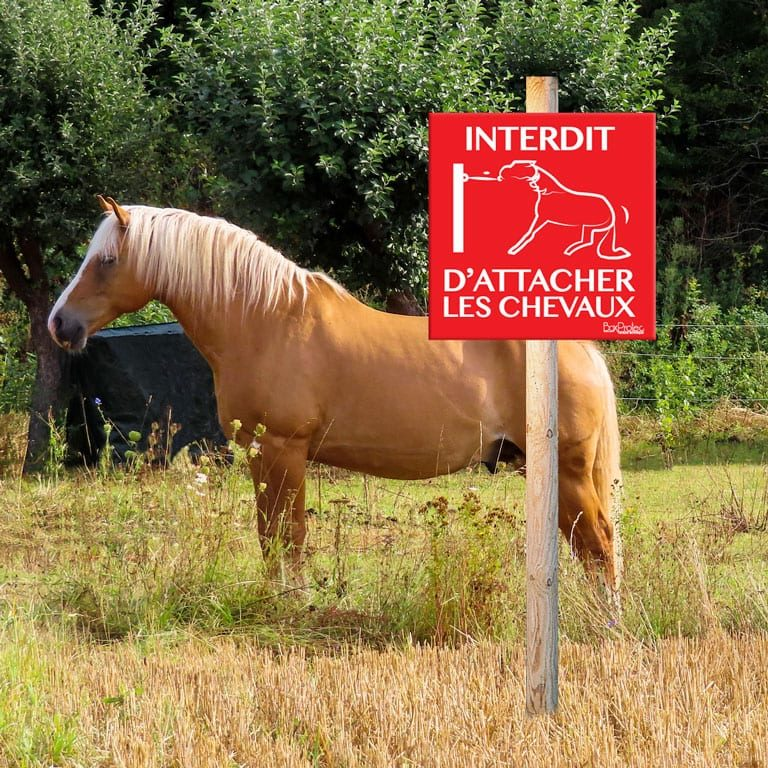 panneau interdiction d'attacher les chevaux