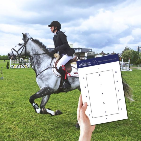 planche d'entrainement équitation