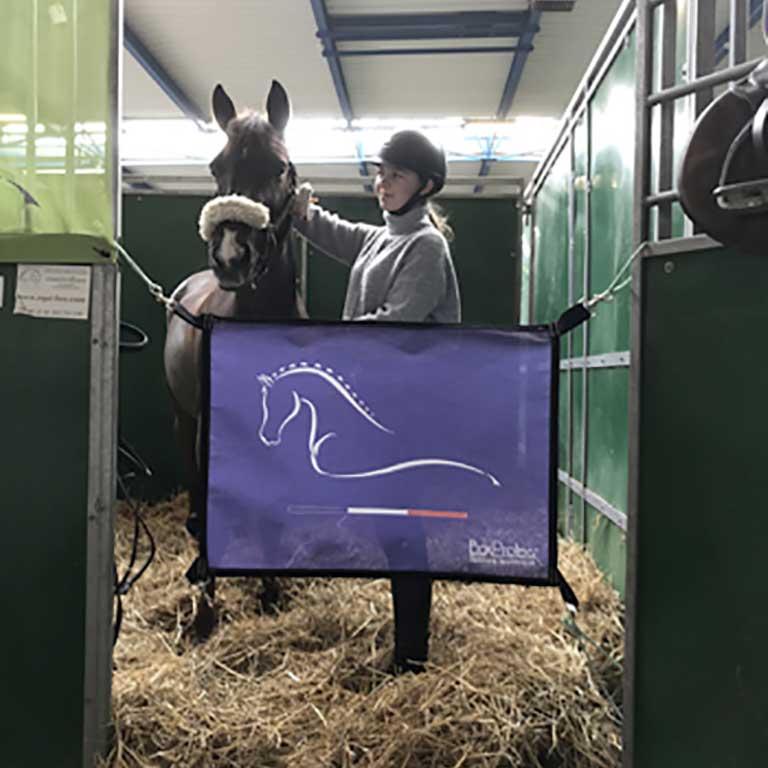 porte de box pour chevaux France