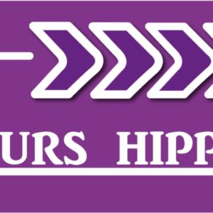 Flèche concours hippique-0
