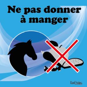 panneau interdit au chien marron écurie cheval boxprotec
