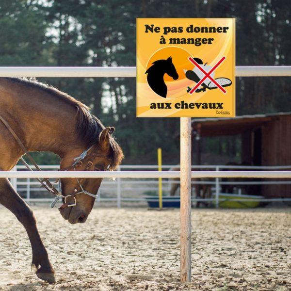 panneau ne pas donner à manger aux chevaux