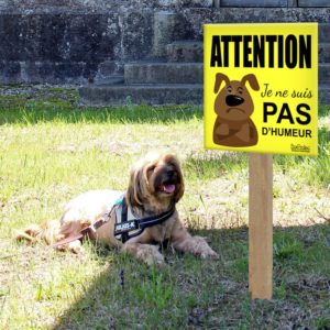 panneau attention au chien humour