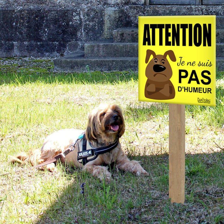 panneau attention au chien humour