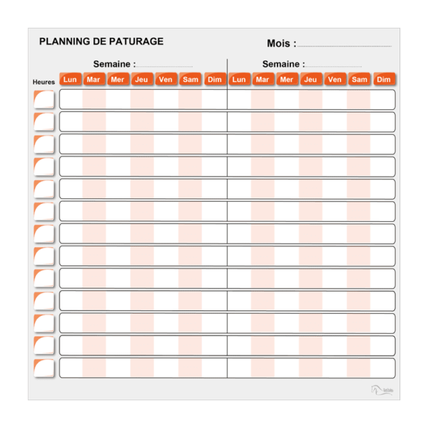 planning de pâture effaçable orange