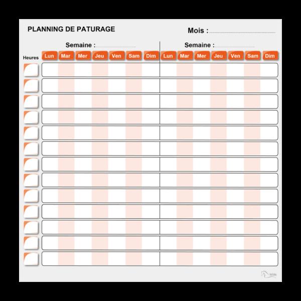 planning de pâture effaçable orange
