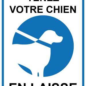 BOXPROTEC - tenir son chien en laisse / tenez votre chien en laisse / fond blanc / panneau / autocollant / stickers / obligation