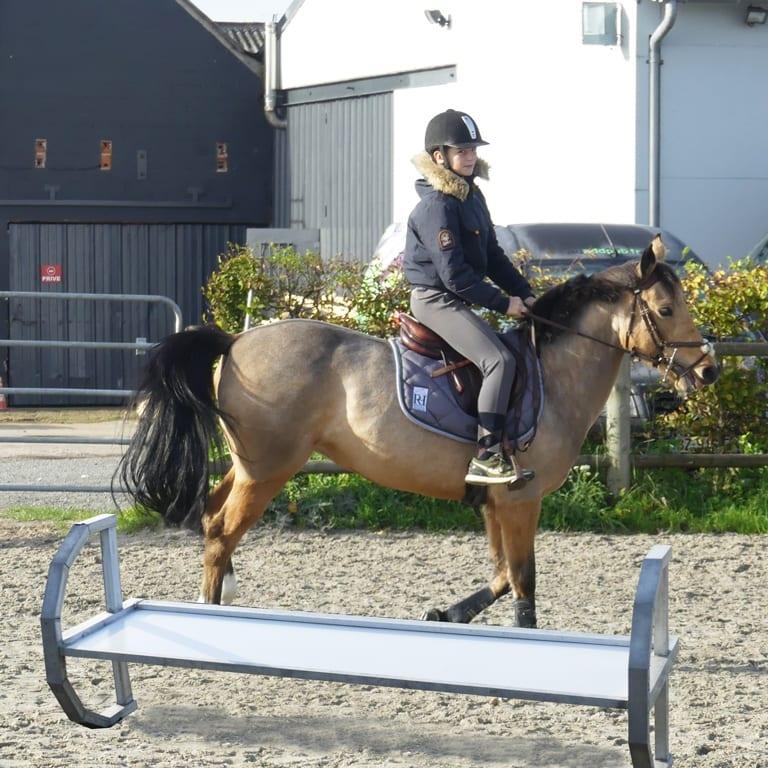 obstacle pour chevaux auto-basculant