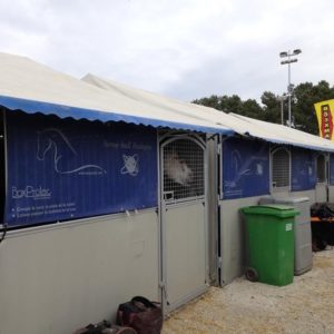 tenture de box horse ball verdegies boxprotec