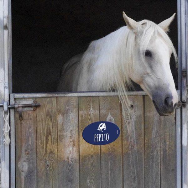 plaque au nom de votre cheval pour box