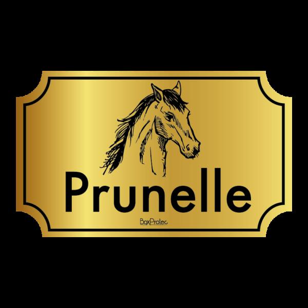 plaque au nom de votre cheval pour box fond or