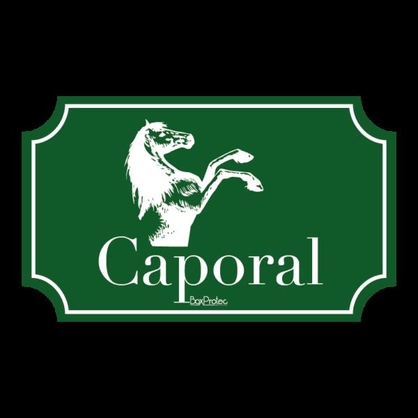 plaque de box au nom de votre cheval pour box fond vert