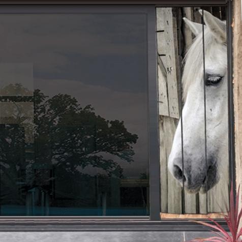 moustiquaire de baie vitrée motif cheval 210 x 75 cm