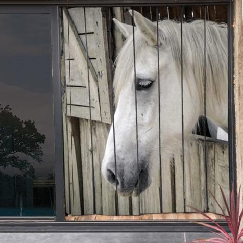 moustiquaire de baie vitrée motif cheval 210 x 175cm